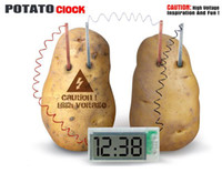 kit de experimentos al por mayor-45x20mm LED Reloj Potato Reloj Inglés GIFT BOX Verde Ciencia Proyecto Experimento Kit niño Lab HomeSchool Curriculum DIY Inicio Escuela Toy Kit
