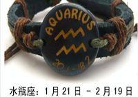 Wholesale 60pcs hot Retro national style Cool Latin twelve constellation series cowhide bracelet fashion