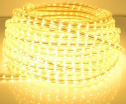 10m 220V 3528SMD waterproof led flexible strip with plug