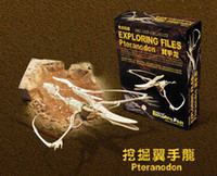 Wholesale educational toys Archaeological Dinosaur Triceratops Velociraptor Pteranodon