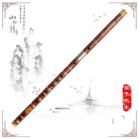 Wholesale Charming China Special high level dual plug bamboo flute Dizi and Xiao family tube Mr system