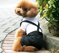 Wholesale Spring new Strap suit Teddy dog clothes Dog clothes Pet Supplies