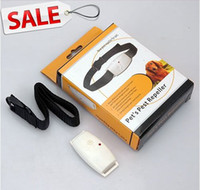 Wholesale New hot Ultrasonic Pet Dog Protect Pest Repeller Anti Fleas Tick Device pet supplier