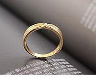 Wholesale Best price fashion and brief style two colour lover ring Christmas