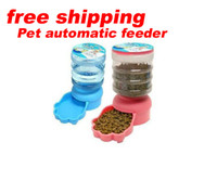 Wholesale Automatic Pets feeders Pet supplies Automatic pet feeding Device BestGift