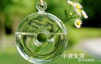 Wholesale freeshipping EMS ceiling ball hanging clear glass vase flower home window shop decor