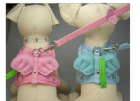 Wholesale pet harness collar dog straps wings angel three colors hotselling