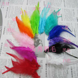 Wholesale Hot Mixed Color cm ROOSTER SADDLE CAPE CRAFT FEATHER for sinamay hat party mask
