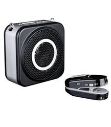 Christmas Gifts TAKSTAR E160W 2.4G digital Wireless Portable Voice Amplifier Fashionable Sound King