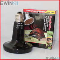Heating Anole & Chameleon  Ceramic Emitter Heated Pet Appliances for Reptile Heat Lamp Light 110V-240V 100W Free shipping 50pcs