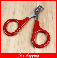 Wholesale Newest Cat Nail Scissors Mini Pet Nail Clippers Cat Cleaning amp Grooming Cat Supplies