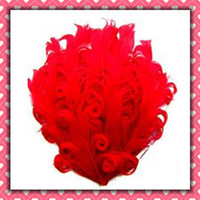 Wholesale Red curly goose feather pads nagorie feather pads
