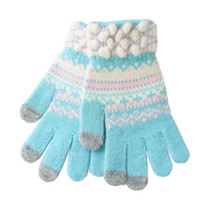 Wholesale T09 Touch Screen Gloves Womens Winter Running Pair I Texting Phones Black Red Blue Gray Sky blue