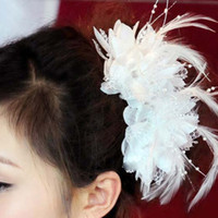 Wholesale Ladies Hair Bows Women Hair Clips Headbands Hair Flowers Hair Clip Hairbows Girls Hair Feathers