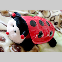 Wholesale New Arrival Lady Bug Projectors LED Lady Bug Night Light LED Kids Christmas Gifts LE18B