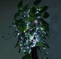 Wholesale Multicolour LED String Light M V110V Decoration Light for Christmas Party
