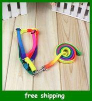 dog harness - Rainbow Color Dog pet Leash Lead amp Harness Adjustable Nylon Traction rope Dog chain