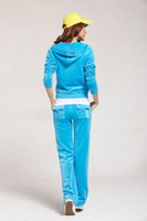 Women Long Sleeve Regular Whole Sale Hot fashion Sweat-Suit,Women's Tracksuits Sky Blue,Velour Cotton,New Sale-1002