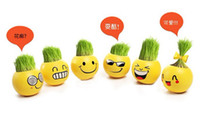 Wholesale Creative cute face plant Bonsai Grass Office Homes Decor Mini Plant pot seeds