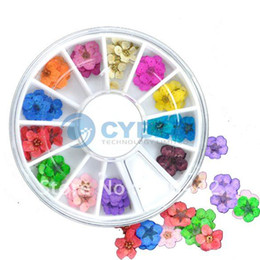Wholesale Dried Flower Wheel Acrylic Nail Art Tips Decorations