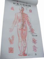Wholesale Acupoint Chart human meridian acupuncture points chart wall chart