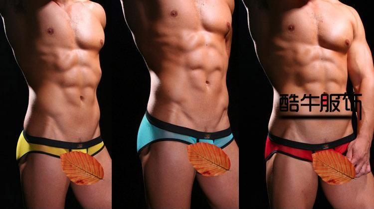 2017 Mens Underwear Sexy Underpants Net Low Waist S/M/L/ Briefs ...