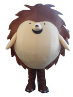 Wholesale hedgehog mascot costume mascot carnival costume fancy dress costumes adult costume custom mascot