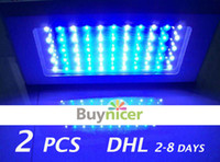 Wholesale 2 watt led aquarium grow lights w w Leds Bulbs Lighting for sale coral reel saltwater fish