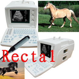 Wholesale Vet Veterinary Digital Portable Ultrasound Scanner machine Rectal Probe warranty