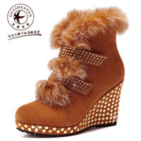 other Women Winter Goodge family 2012 autumn young girl snow boots single boots wedges women's shoes high-heeled boots ankle boots