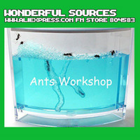 Wholesale New Arrival Freee shipping Novel ecological toys Ants workshop Ants home for children educational to