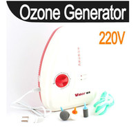 Wholesale Food Ozone Generator Water Air Sterilizer Ozonizer
