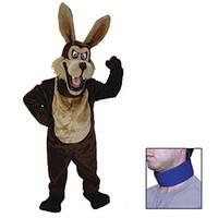 video bango mascot means dressing costume