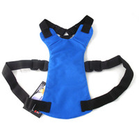 Wholesale New Pet Seat Belt Blue Color for Dog Cat Pet Harness Sizes