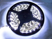 Wholesale 300LED SMD3528 Waterproof Flexible lights led strip light neon light
