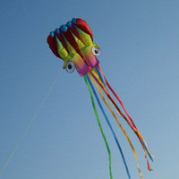 software retail wholesale - and retail cuttlefish color software kite Sport Flying Kite m long Kid Toy Gift and r