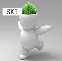 big grasses - retail Creative Gift Plant big white Hair man Plant Bonsai Grass Doll Office Mini Fantasti