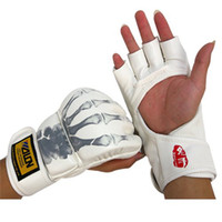 Wholesale Global new mail Wulong MMA wrestling boxing gloves Sanda punching sandbag