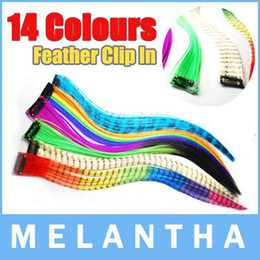 Wholesale 2013 Promotion Clip in on Feather hair extensions extension pieces DHL Fast Shipping
