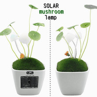 Wholesale LYL Solar avatar lamps mushroom lamp small night light multicolour lights Valentines Gifts