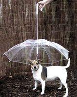 Wholesale Petumbrella pet dog umbrella umbrella pet raincoat dog raincoat teddy is small dogs