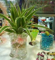 Wholesale 3000g Magic Gel Crystal Soil Mud Water Beads Pearl Gem for Flower Plants