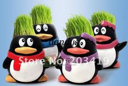 Wholesale retail Gift penguin cute Hair man Plant Bonsai Grass Doll Office Mini Plant Fantastic Home