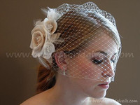 Wholesale Discount Bride Veil Comb Blusher Birdcage Ivory Champagne Flowers Feather Bridal Veil Wedding Dress