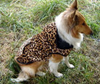 Wholesale large dog Leopard pet hoodie velour camlet cotton Hot sales