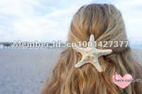 Wholesale New Natural starfish really starfish cm