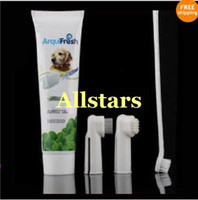 Wholesale Brushes Dog Cat Pet Hygiene Teeth Care Toothbrush w Toothpaste Set Kit