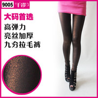 Women Lace Leggings Independent real shot chart 2013 New Bronze-colored Pantyhose Shiny Sexy Leggings Punk Style Thick Warm Legging Tights