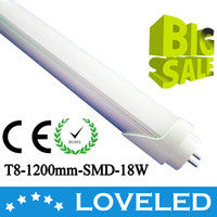 Wholesale Promotions Superbright W T8 LED Tube Light Lamp Bulb mm Feet Pure White AC V