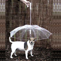 Wholesale Pet umbrella dog umbrella pet raincoat dog raincoat zhuaizhu dog rope dog collar